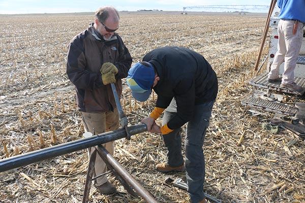 researcher working in field
