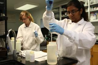 People working in Laboratory