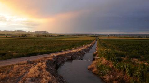 Water canal running beside field